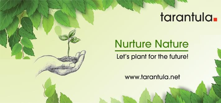 Tarantula India office plants over five hundred trees in tree plantation drive