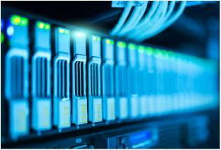 tarantula hosting services
